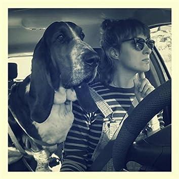 Driving Ahound