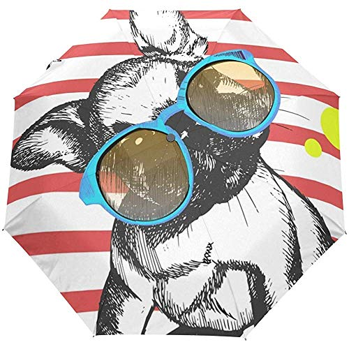 Dog Puppy Summer Auto Open Umbrella Sun Rain Umbrella Anti UV Folding Compact Automatic Paraguas