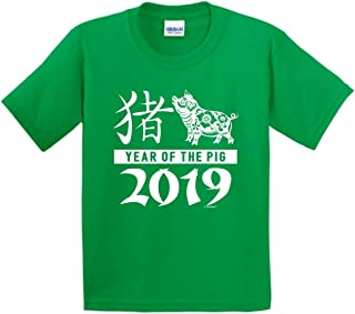 Youth Sized Chinese New Year Outfit 2019 Year Pig Calligraphy Youth T-Shirt