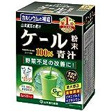 Kale AOJIRU 100% | Kale Powder | Stick 3g x 22 (Japanese Import)