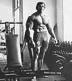 24inch x 27inch/60cm x 68cm Arnold Schwarzenegger Silk