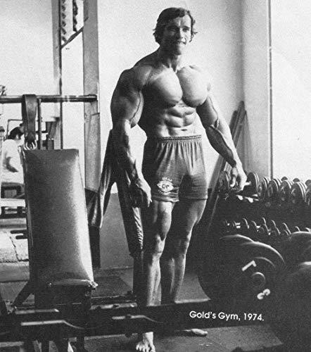 24inch x 27inch/60cm x 68cm Arnold Schwarzenegger Silk Poster