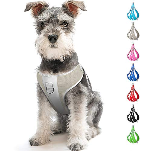 Fida Step-in Dog Harness, Superior Reflective Puppy Vest Harness- All Weather Air Mesh, Adjustable Harness for Medium Dog (M, Gray)