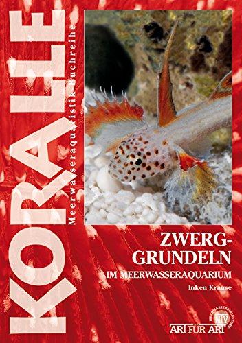 Zwerggrundeln im Meerwasseraquarium (Art für Art)