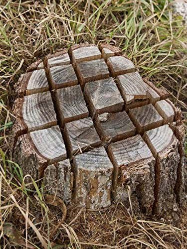 WoodAway Baumstumpfentferner 600g