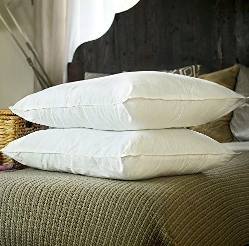Silk Bedding Direct Pareja DE Almohadas RELLENA DE Seda Hebras Largas de Seda de Morera Envueltas Alrededor de un Núcleo de Seda Sintética. 75cm x 50cm. Precio DE Venta BAJO