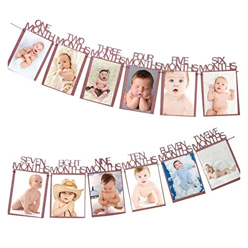 ZQYBH Birthday Banner 12 Months Photo Bunting Bath Paper Garland Boy Girl 1 Year Old Birthday Party Decoration (Color : Pink Month)