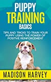 Puppy Training Basics: Tips And Tricks To Train Your Puppy Using The Power Of Positive Reinforcement