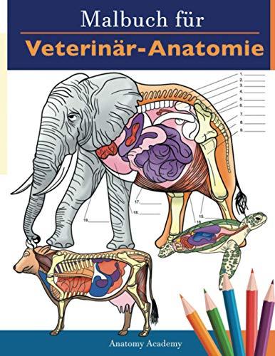 Malbuch für Veterinär-Anatomie: Tierphysiologie-Selbstquiz Arbeitsbuch zum Lernen und Entspannen   Perfektes Geschenk für Tiermedizin-Studenten und sogar Erwachsene