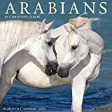 Arabians 2021 Wall Calendar