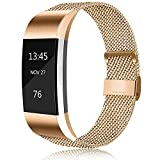 Erencook Bands Compatible with Fitbit Charge 2 Band, Adjustable Stainless Steel Magnetic Lock Replacement Wristband for Women Men (Large, Rose Gold)