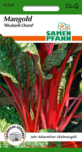 Samen Pfann G524 Mangold Rhubarb Chard (Mangoldsamen)