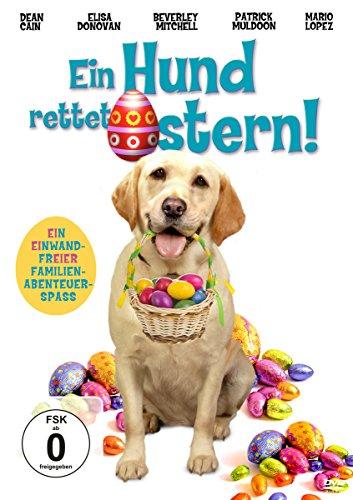 Ein Hund rettet Ostern