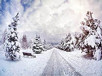 Best snowy forest path Reviews