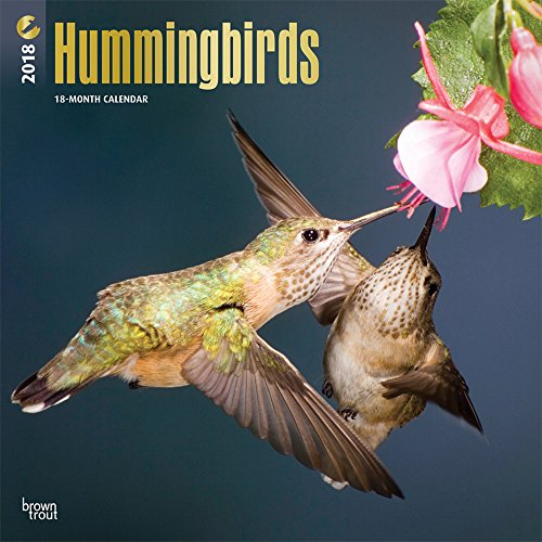 Hummingbirds - Kolibris 2018 - 18-Monatskalender: Original BrownTrout-Kalender [Mehrsprachig] [Kalen