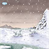 Posterlounge Acrylglasbild 30 x 30 cm: Der kleine Eisbär
