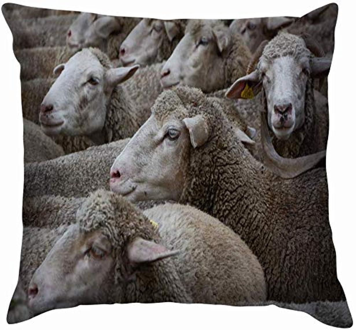 の量平方超音速羊の群れ公園マドリード動物野生動物広告食べ物と飲み物投げ枕カバーホームソファクッションカバー枕カバーギフト45x45 cm