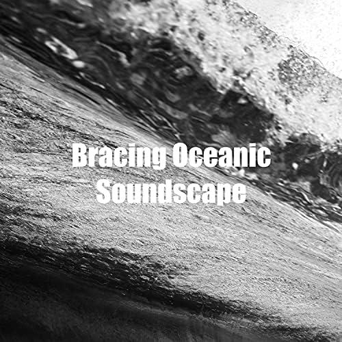 Ocean FX
