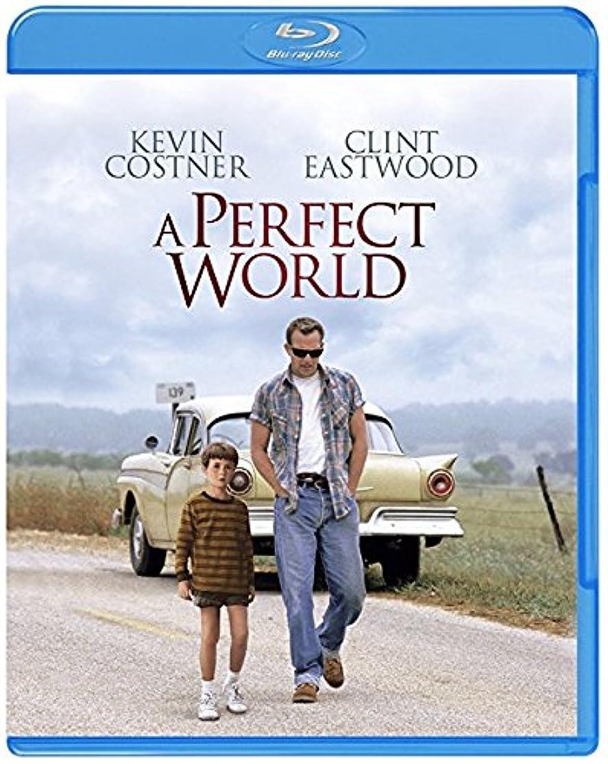 優しさどこでも失われたパーフェクト ワールド [WB COLLECTION][AmazonDVDコレクション] [Blu-ray]