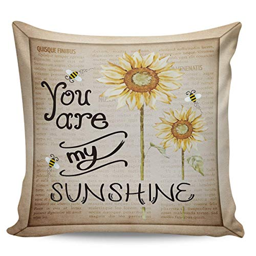 LREFON Doble Cojines Fundas 18' Peluche Corto Girasoles You Are My Sunshine Vintage Funda Almohada Suave