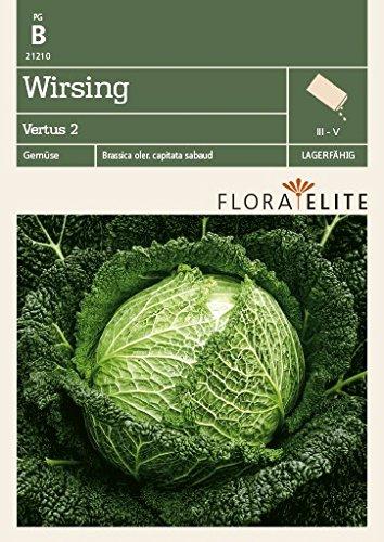 Flora Elite 21210 Wirsing Vertus 2 (Kohlsamen)