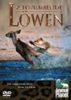 Animal Planet - Schwimmende Löwen