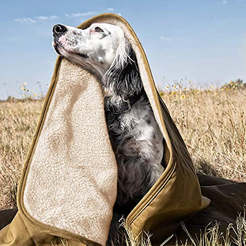 Hundedecke - Flauschig, Weich u. Waschbar,Decke für Haustier wasserdichte und Plüsch, Pet Decke Tragbar Falten Wasserdicht Warm Hohe Qualität Verschleißfestigkeit Langlebig Decke Für Pet Cat Hund