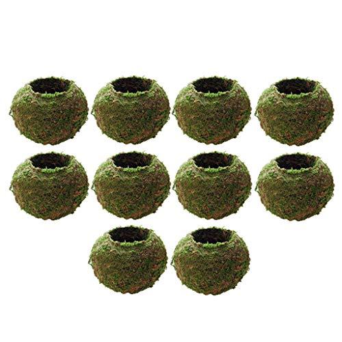 Baoblaze 10xCreative Moss Ball Maceta Jardinera Bonsai