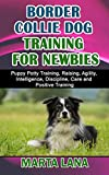 BORDER COLLIE DOG TRAINING FOR NEWBIES: Puppy Potty Training, Raising, Agility, Intelligence, Discipline, Care and Positive Training (Dog Training and Care Tips Book 11)