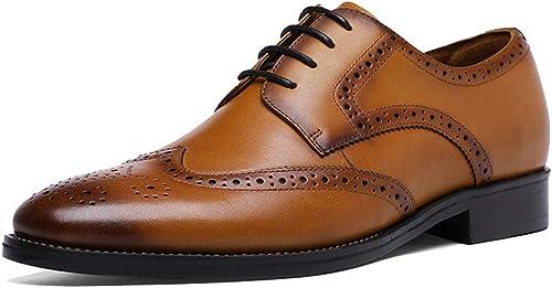 RSHENG Chaussures derby creuses pour hommes, chaussures pour hommes, chaussures habillées, style britannique, vent, chaussures basses rétro