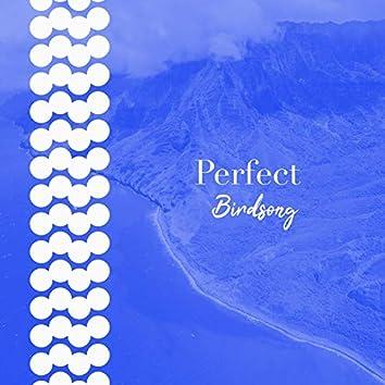 Perfect Birdsong, Vol. 2