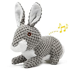 Cute Easter Bunny Toys Design: IOKHEIRA dog plush toy is inspired by rabbits in nature, the realistic animal shape dog toy is perfect for stimulating your doggy's hunting instinct and increasing their interest in chasing, fetching and playing. IOKHEI...