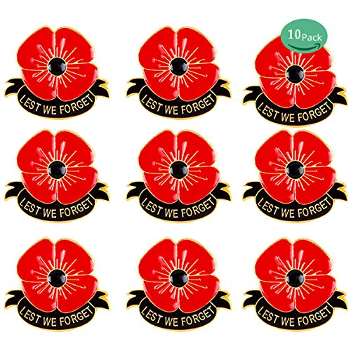 rhungift 10 Pack 1inch Metal Poppy Flower Badges Lapel Pins Brooch Lest We Forget Veterans Day Memorial Day Remembrance Day Gifts