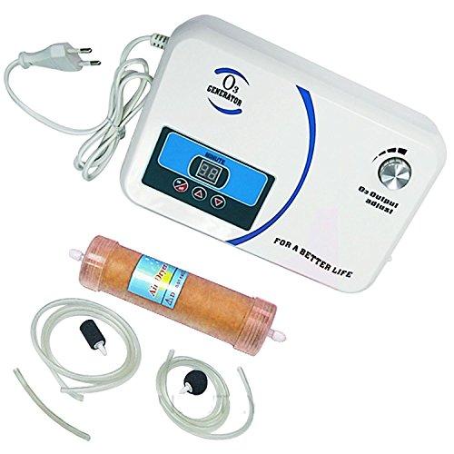 newtry 300 en el hogar Generador de Ozono oxígeno activo lavadora máquina de desintoxicación de frutas y verduras esterilizador de aire purificador de agua 220V