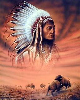 Best buffalo native american art Reviews