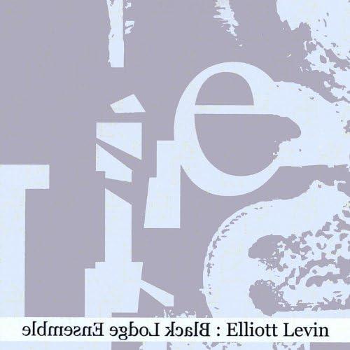 Elliott Levin