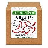 Garden Pocket - Kit Cultivo GUINDILLA Cayenne