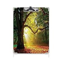フォルダーボードフォルダーライティングボード 葉 事務用品の文房具 (2パック)広大な広葉樹の雄大な雄大なオークの木太陽光線自然オレンジグリーンブラウン