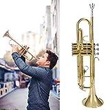 Oyunngs Strumento a Tromba Piatta in Ottone Dorato B, Kit di Strumenti a fiato per Tromba ...