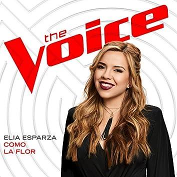 Como La Flor (The Voice Performance)