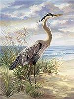 DMFNGJSD 数字油絵 フレームレス 、数字キット塗り絵 手塗り DIY絵-首の長い鳥-デジタル油絵 40x50 cm