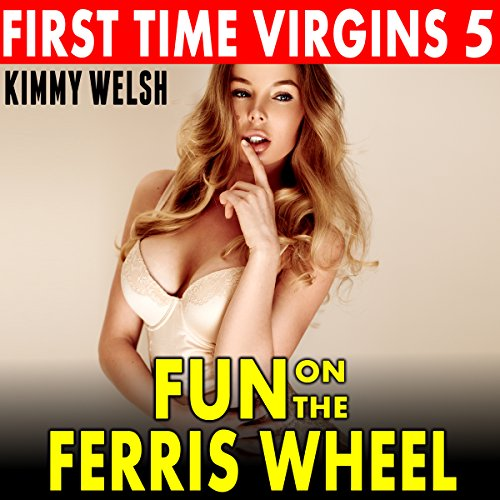 Fun on the Ferris Wheel audiobook cover art