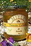 Miele Acacia Biologico 500g - 100% Italiano