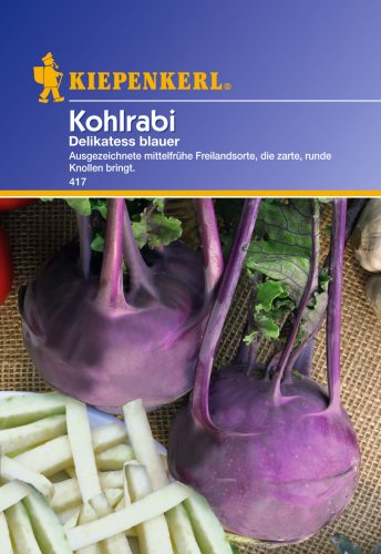 Sperli 417 Gemüsesamen Kohlrabi Delikateß, blau/grün
