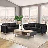 DKLGG 2 Pieces Living Room Sofa Couch Loveseat Set Sectional Sofa Morden Style Furniture Sofas Upholstered Armrest for Home (Black)