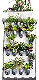 Benjamin Starter-Kit (echt) vertikaler Garten