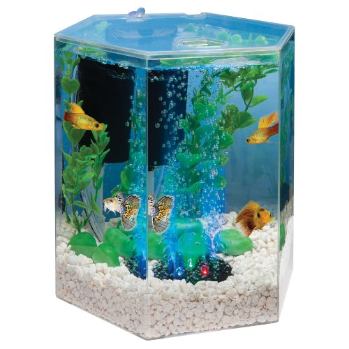 Tetra 29040 Hexagon Aquarium Kit with LED Bubbler, 1-Gallon (Packaging may vary)