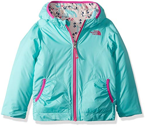 Product Image of the The North Face