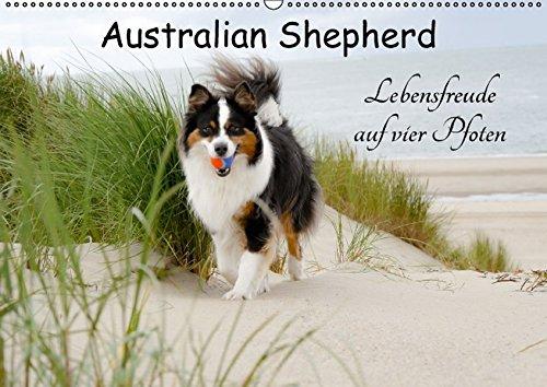 Australian Shepherd - Lebensfreude auf vier Pfoten (Wandkalender 2016 DIN A2 quer): Die Abenteuer eines powervollen Australian Shepherd (Monatskalender, 14 Seiten ) (CALVENDO Tiere)