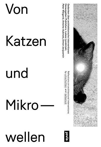 Von Katzen und Mikrowellen – Gedanken über architektonische Interventionen